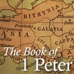 Your IDENTITY in Christ and in the Church (1 Pet 2:4-5)